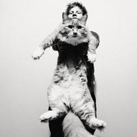 Ed Sheeran - Give Me Love エド・シーラン「ギヴ・ミー・ラヴ」